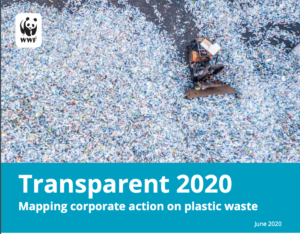 Mapping corporate action on plastic waste